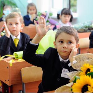 Школы Конышевки